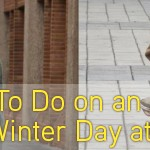 5 Things To Do on an Unseasonably Warm Winter Day at College