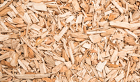 Wood Chip Fuel for Biomass Boiler