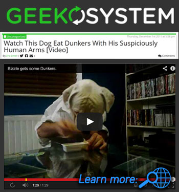 Geekosystem - Watch Dog Eat Dunkers With His Suspiciously Human Arms graphic