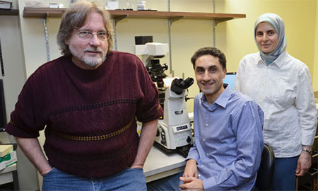 Vision researchers from Upstate Medical University and SUNY Cortland