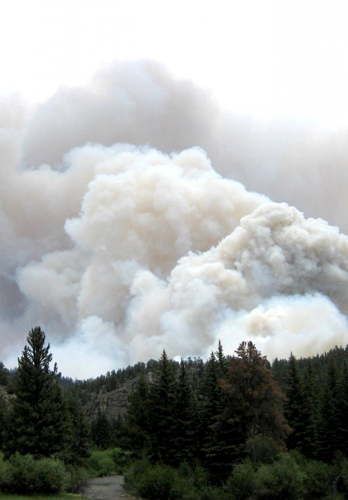 US Park Service forest fire