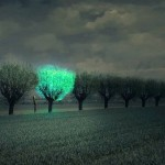 Future Cities Lit by Beautiful Bioluminescent Trees