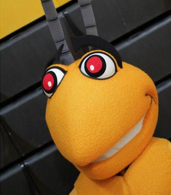 Broome mascot