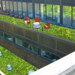 College's Organic Rooftop Changes Colors With The Seasons