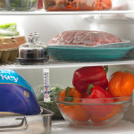 6 Foods Every College Student Should Keep In Their Fridge