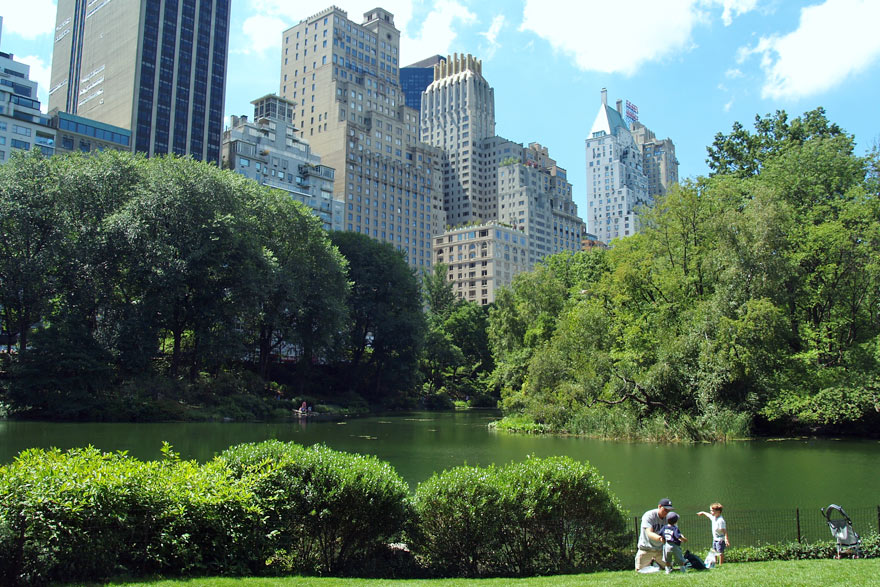 Pond in Central Park with high-rise buildings in background.