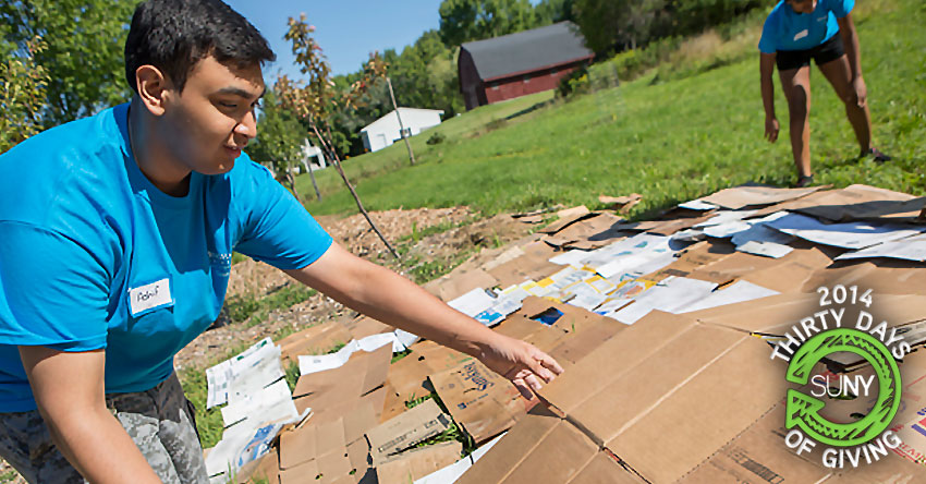 Student Ashif Hassan helps at Binghamton University Acres Farm for the Welcome Week Service Project program.