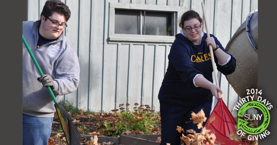 SUNY Geneseo students rake leaves at the home of elderly residents during the college's annual Geneseo CARES event in October.