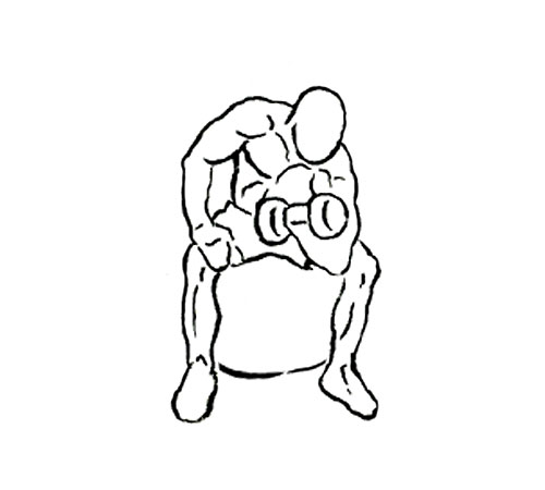 Person doing bicep curls