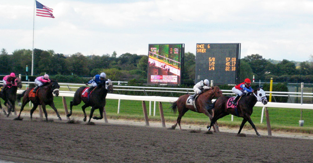 Horse race at Belmost Race Track in NY.