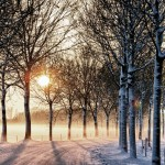 Bundle Up For Some Cold Weather Fun Near a SUNY Campus This Winter