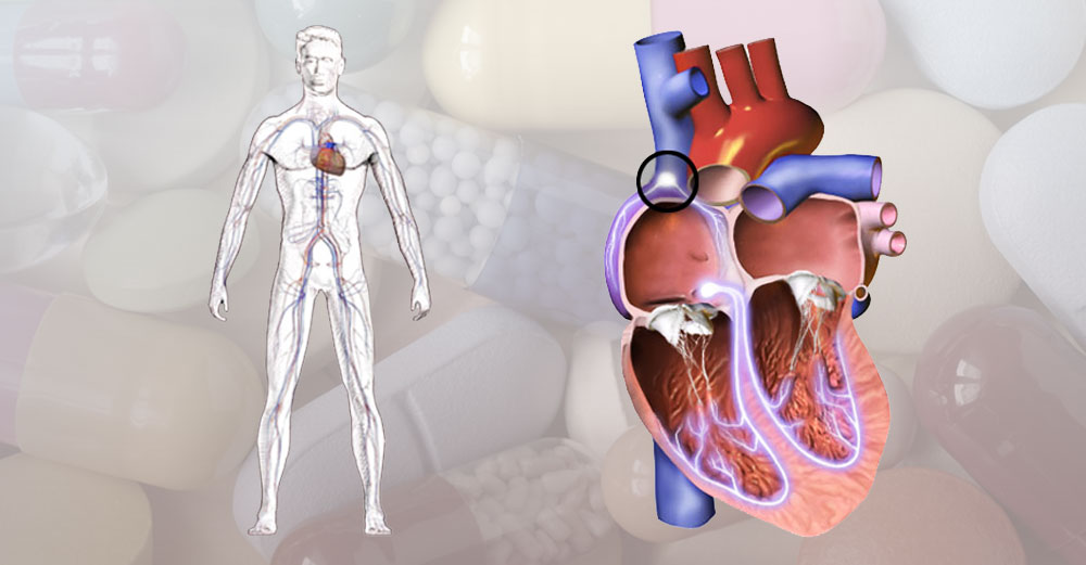 Heart diagram over pills background