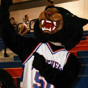 Panther Mascot1