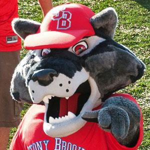 Wolfie Seawolf at Stony Brook football game