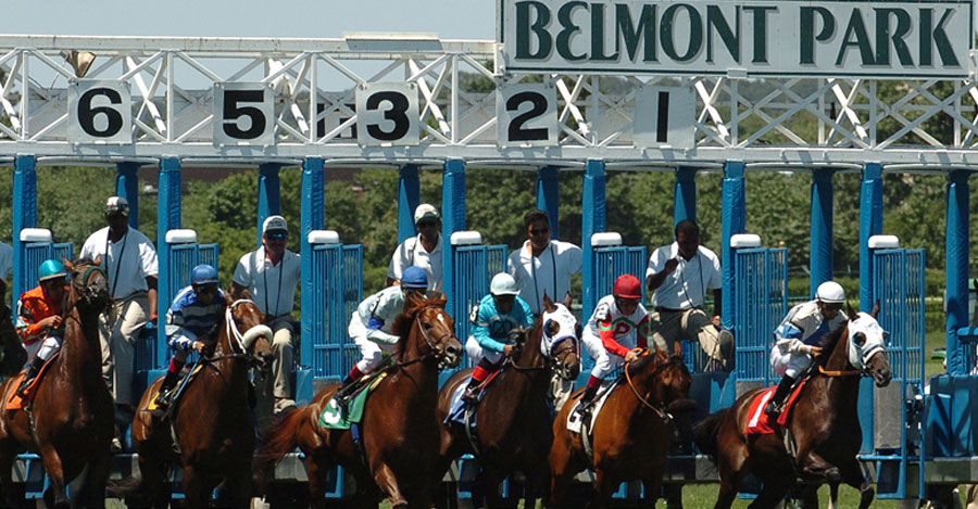 Belmont Park horse racing starting gate