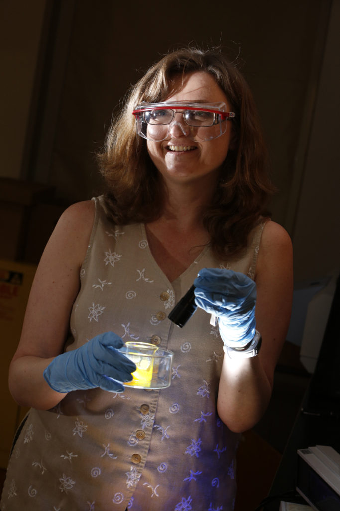 Associate Professor of Chemistry and Biochemistry Jacqueline Bennett demonstrates her research in a lab in SUNY Oneonta's Science I building.