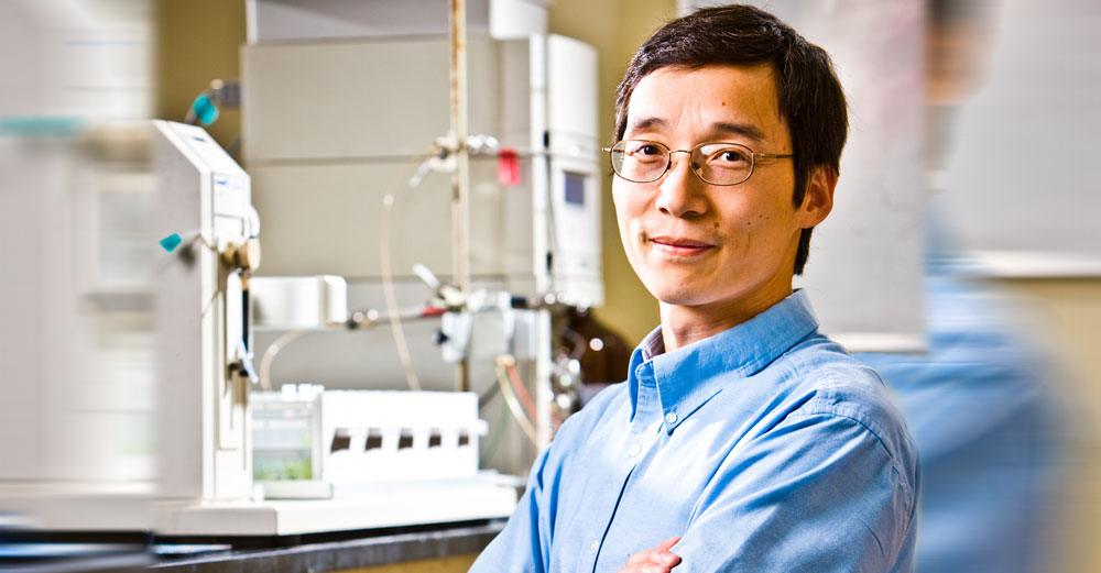 UBuffalo professor Qing Lin in his lab.