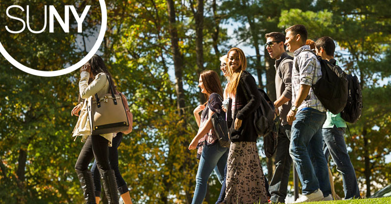 Diverse students walk along a tree lined path.