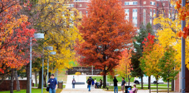 Binghamton University walkway on campus through trees in fall colors.