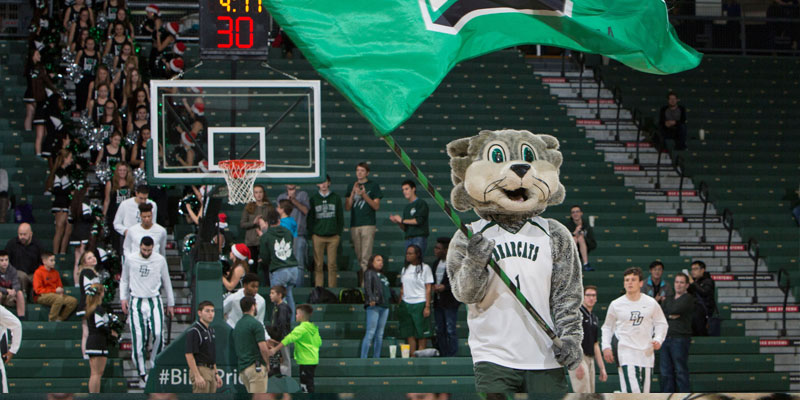 Baxter Bearcat from Binghamton University swinging a flag in the campus arena