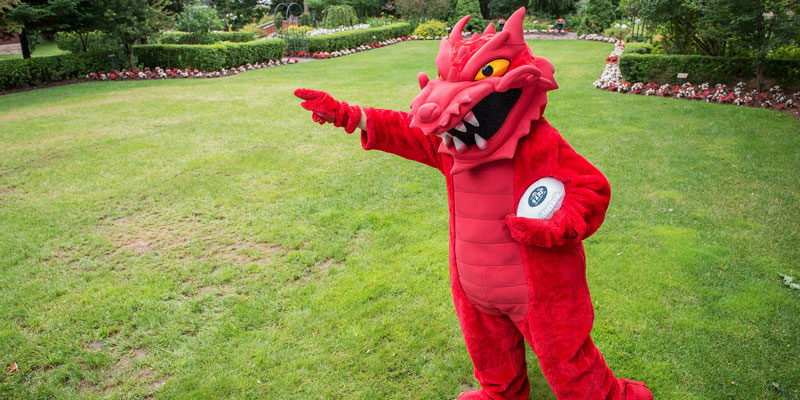 SUNY Cortland mascot Blaze Dragon outside carrying a football.