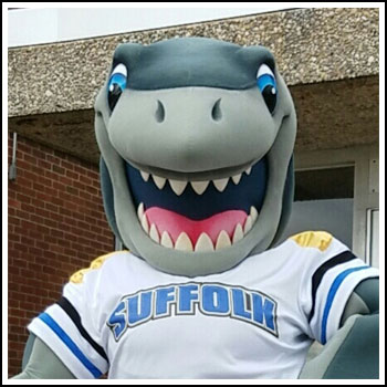 Finn Shark from SUNY Suffolk County Community College
