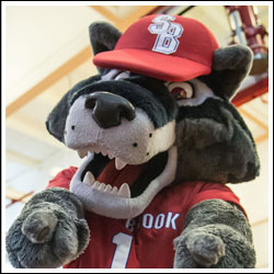 Stony Brook mascot Wolfie Seawolf