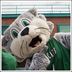 Baxter Bearcat from Binghamton University