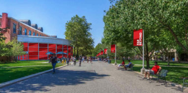 Walkway on Stony Brook University campus with red 'Far Beyond' banners hanging on light poles.