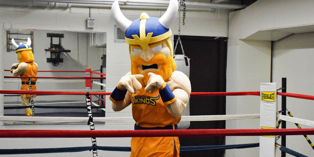 Westchester Community College Mascot Chester the Viking boxing in the gym.