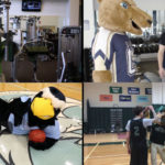 A Day In The Life Of A Hard Working SUNY Mascot
