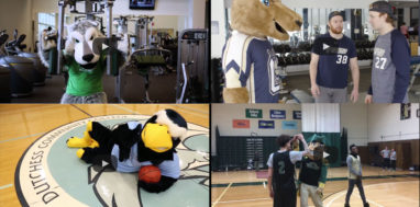 Screenshots of SUNY mascot videos