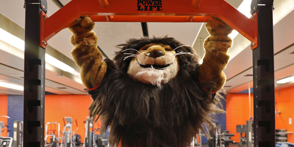 Nassau Community College mascot Leo the Lion dows pull-ups in the gym.