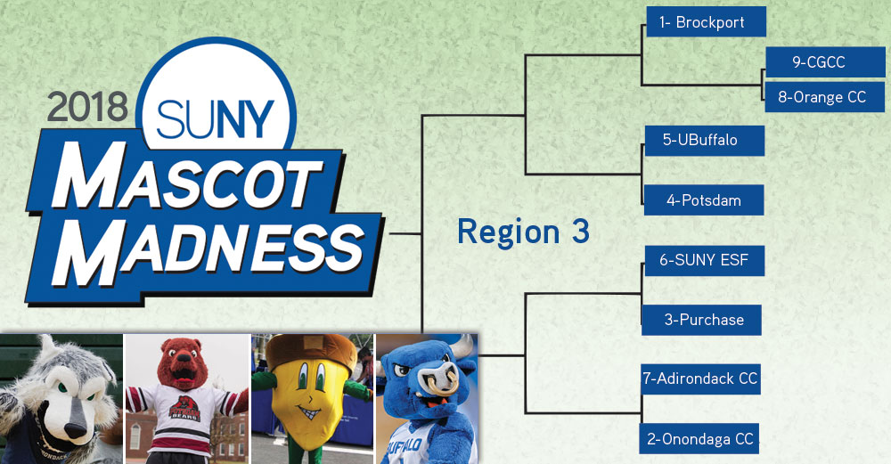 Mascot Madness 2018 region 3 bracket