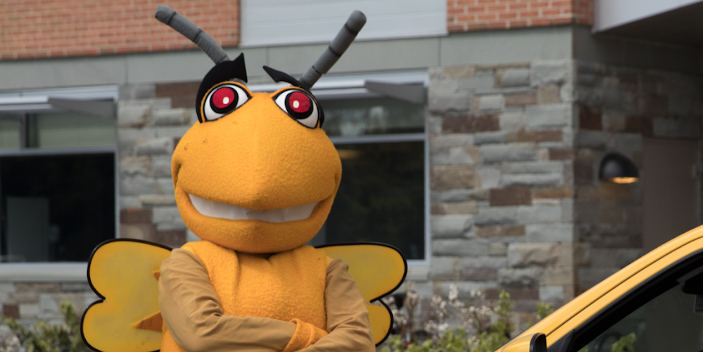 Broome Community College mascot Stinger outside with arms crossed.