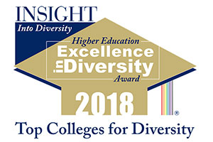Insight into Diversity Higher Education Excellence in Diversity Award 2018 logo
