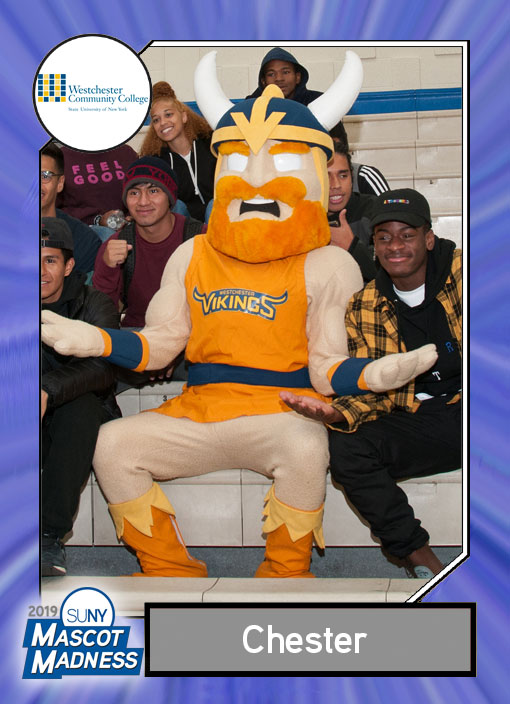 Chester Viking, Westchester Community College mascot sportscard