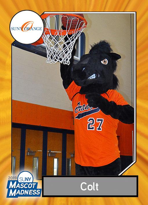 Colt, SUNY Orange mascot, sportscard