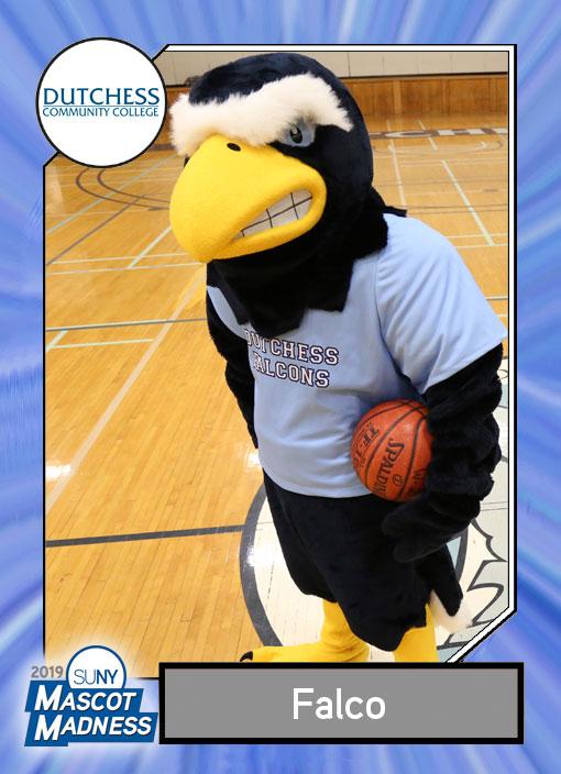 Falco, Dutchess Community College mascot sportscard