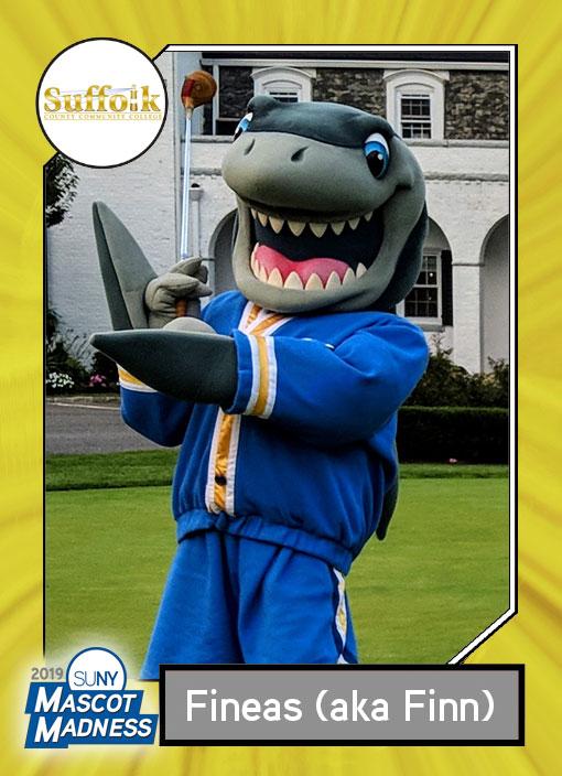 Finn, Suffolk Community College mascot sportscard