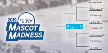 Mascot Madness 2019 region 3 bracket