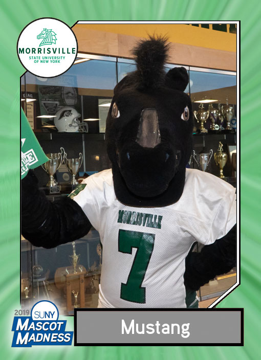 Mustang, Morrisville State College mascot sportscard