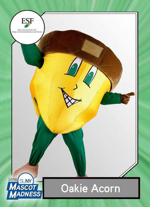 Oakie Acorn, SUNY ESF mascot sportscard