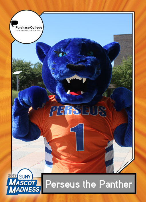 Perseus Panther, SUNY purchase mascot sportscard