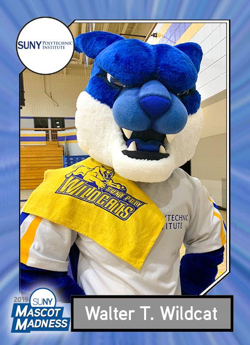 Walter Wildcat, SUNY polytechnic Institute mascot sportscard