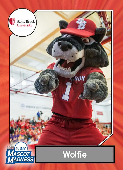 Wolfie, Stony Brook University mascot sportscard