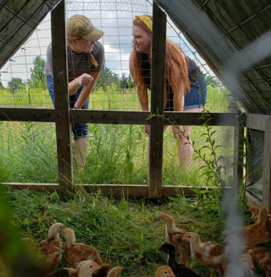 a view of Cheyanne Maryellen from inside a chicken pen.