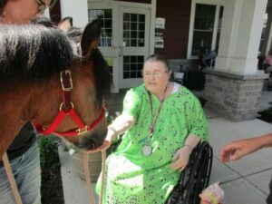 An elderly woman in wheelchair touches a therapy horse on the nose.