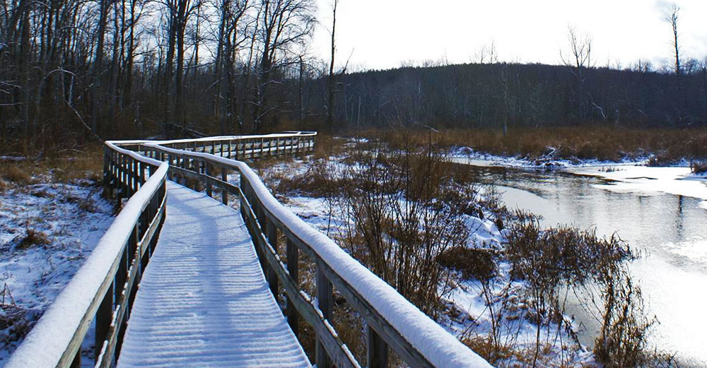 A snow covered woodwn walkway through woods near the SUNY Oswego office.