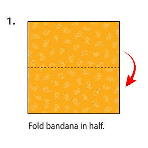 Square bandana cloth with dotted line in middle.
